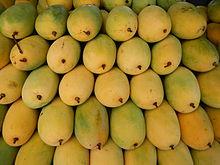 week 15 Mangos