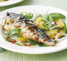 week 24 mackerel