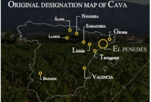 week 25 map of cava