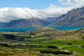 week 49 New Zealand