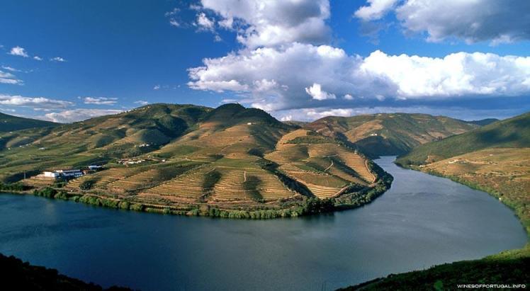 #55 - Douro Valley